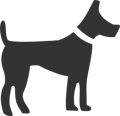 Beförderung von Tieren
